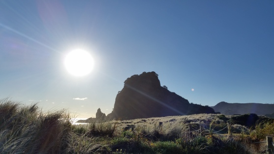 Lion Rock on Piha Beach