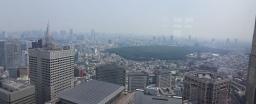 Yoyogi Park , KDDI Building and NT Docomo Yoyogi Building